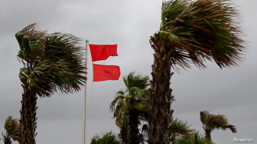 A red warning flag flies as palm trees sway in the wind as Hurricane Sally approaches in Gulf Shores, Alabama, U.S., September…