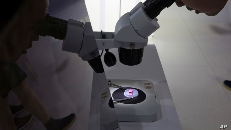 FILE - A computer chip is being viewed through a microscope at the 21st China Beijing International High-Tech Expo, in Beijing, China, May 17, 2018. U.S. export restrictions are now targeting Chinese chip maker SMIC.