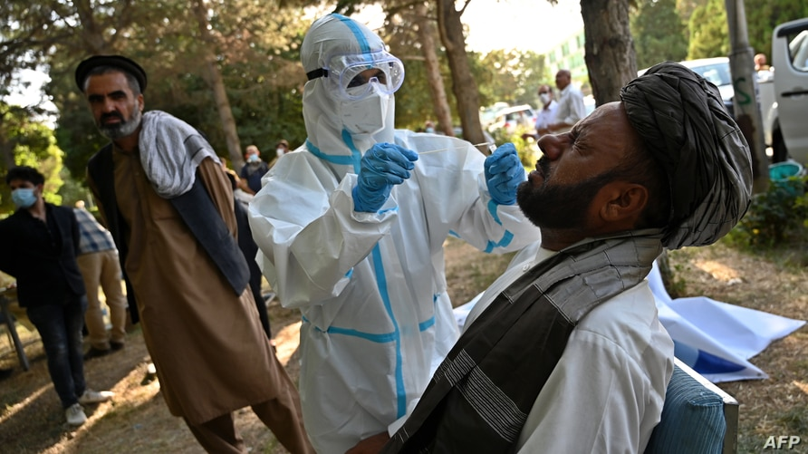 A medical official wearing a Personal Protective equipment (PPE) suit takes a swab sample from a members of the Loya jirga …