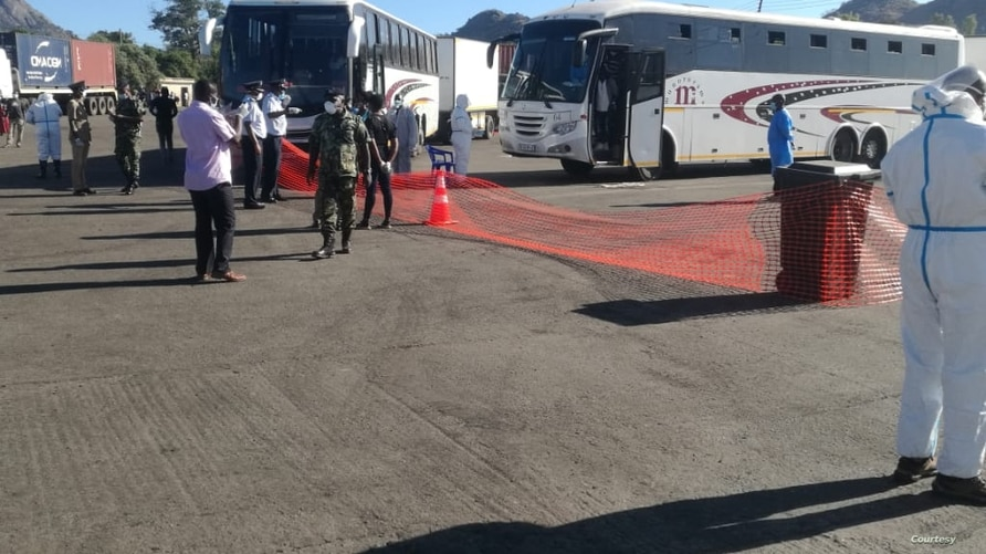 Buses carrying Malawian migrant workers from South Africa arrive at Mwanza Border in southern Malawi. (Courtsy of Pasqually Zulu, Mwanza Border Immigration)