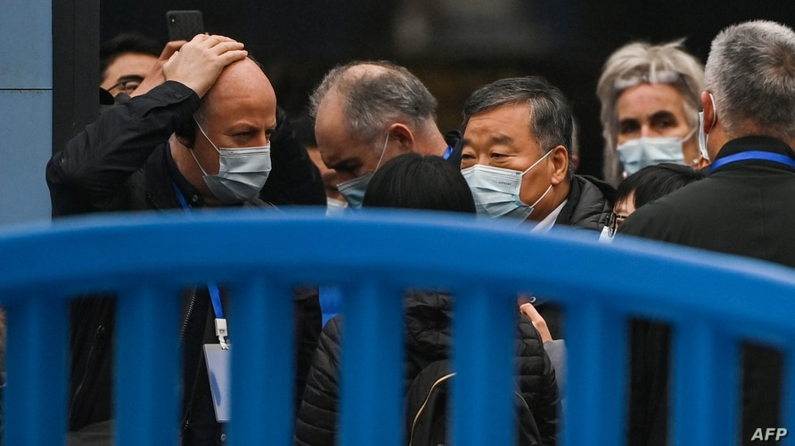 Members of the World Health Organization (WHO) team, investigating the origins of the Covid-19 coronavirus, visit the closed…