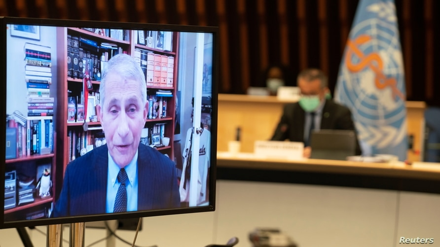 Dr. Anthony Fauci, director of the National Institute of Allergy and Infectious Diseases speaks via video link during the 148th…