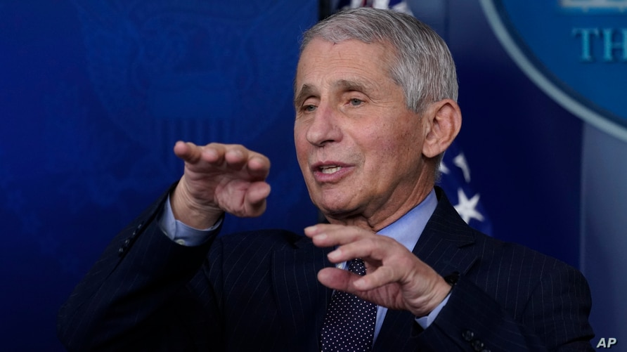FILE - In this Jan. 21, 2021 file photo, Dr. Anthony Fauci, director of the National Institute of Allergy and Infectious…