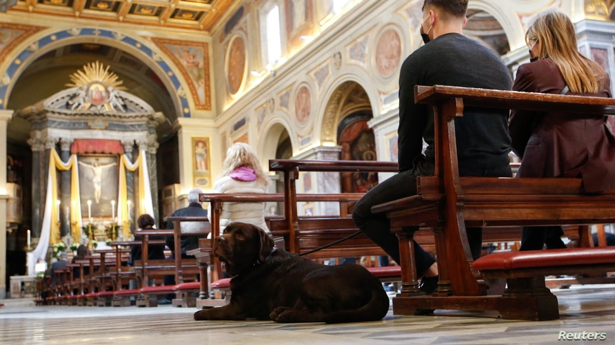 A dog sits next to faithful who attend an Easter Mass in the San Lorenzo in Lucina church, amid the coronavirus disease (COVID…