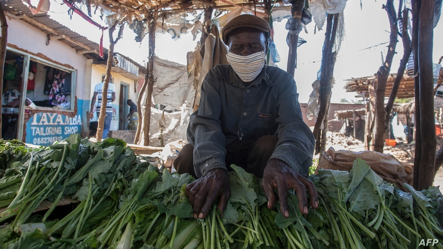 FILE - A vendor displays vegetables at his stand, as he wears a face mask to protect against the coronavirus, at an agricultural commodity market in Lilongwe, Malawi, May 4, 2020.