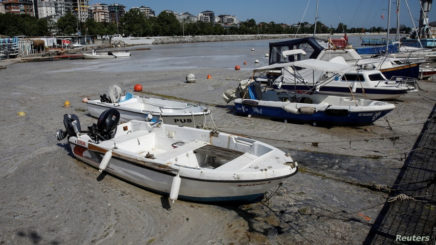 Boats are docked in a small port covered with 'sea snot,' a thick slimy layer of organic matter, also known as marine mucilage, spreading through the Sea of Marmara and posing a threat to marine life, on the shores of Istanbul, Turkey, June 6, 2021.