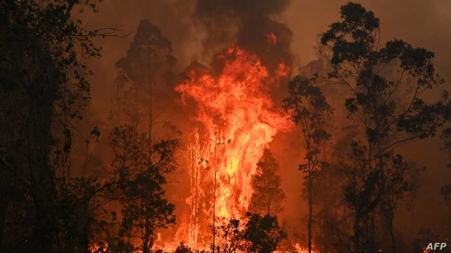 TOPSHOT - A fire rages in Bobin, 350km north of Sydney on November 9, 2019, as firefighters try to contain dozens of out-of…