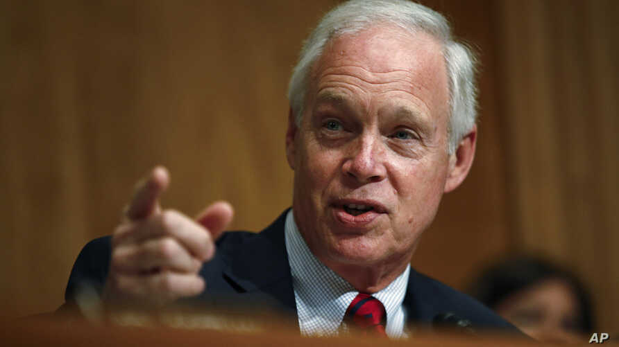 Sen. Ron Johnson, R-Wis., chairman of the Senate Committee on Homeland Security and Governmental Affairs, speaks during a hearing on border security, Wednesday, June 26, 2019, on Capitol Hill in Washington. (AP Photo/Patrick Semansky)