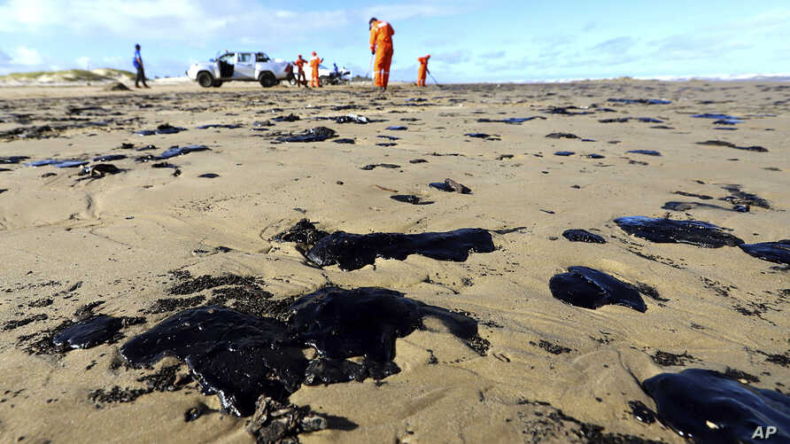 CORRECTS DATE - In this Oct. 7, 2019 handout photo released by the Aracaju Municipal Press Office, workers remove oil from…