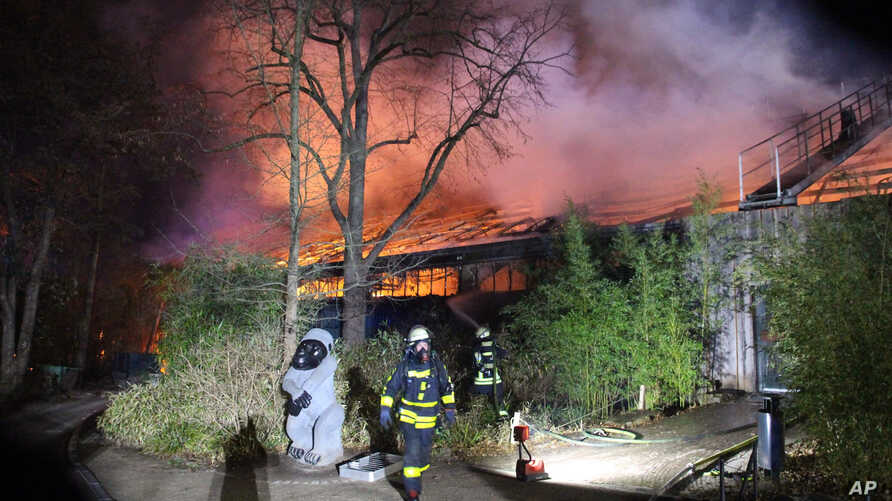 Firefighters stand in front of the burning monkey house at Krefeld Zoo, in Krefeld, Germnay, Wednesday Jan 1, 2020. A fire at a…