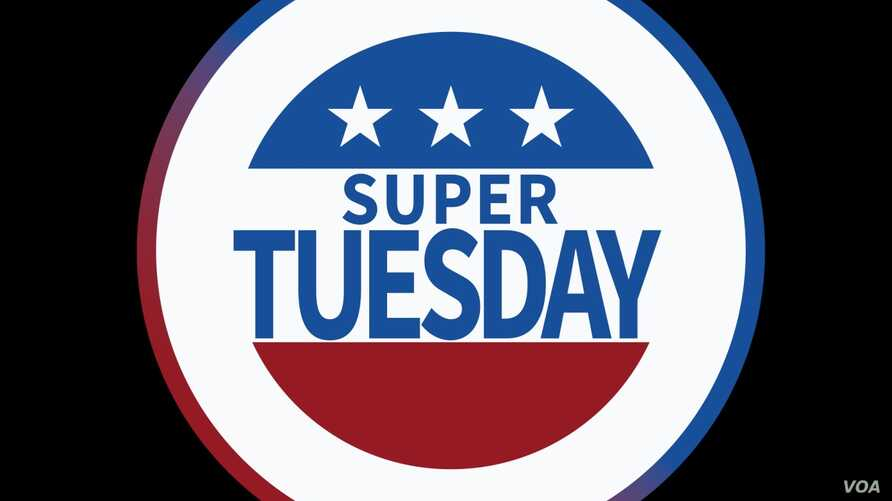 SUPER TUESDAY button logo, on texture, partial graphic