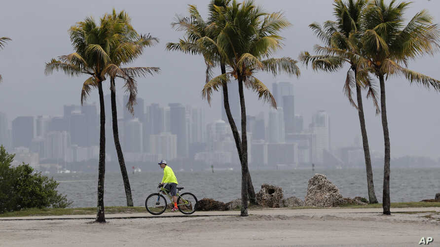 The Miami skyline is shrouded in clouds as a cyclist rides along Biscayne Bay at Matheson Hammock Park, Friday, May 15, 2020,…
