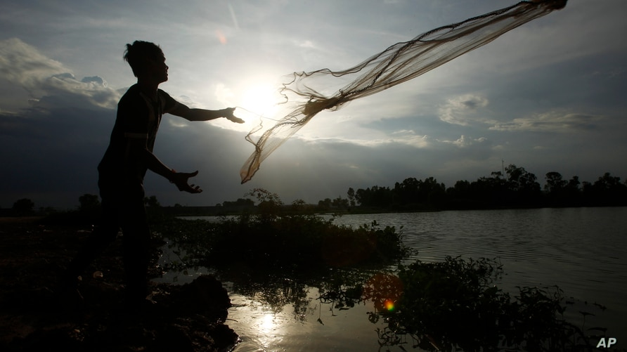 A construction worker casts a fishing net onto a flooded land following recent rain to catch fish on the outskirts of Phnom…
