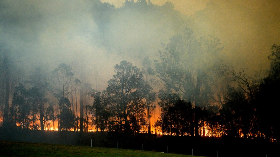 A bushfire burns in Bodalla, New South Wales, Australia, Saturday, Jan. 25, 2020. Wildfires destroyed more than 3,000 homes and…