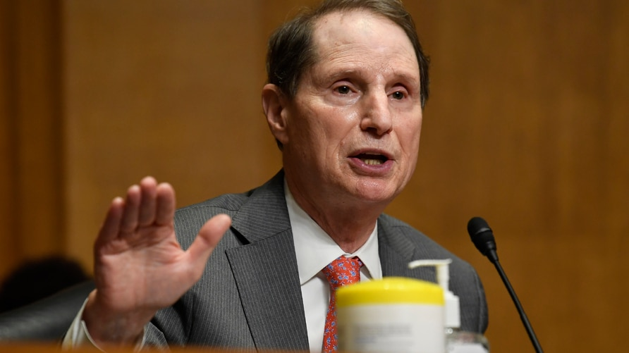 Senator Says Hackers Compromised US Treasury Email Accounts | Voice of  America - English