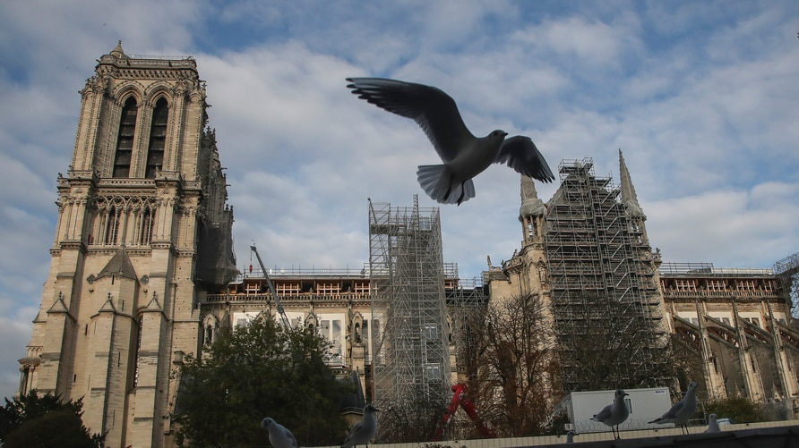 A seagull flies in the sky next to Notre Dame Cathedral, Wednesday, Nov.25, 2020, in Paris. Officials overseeing the…