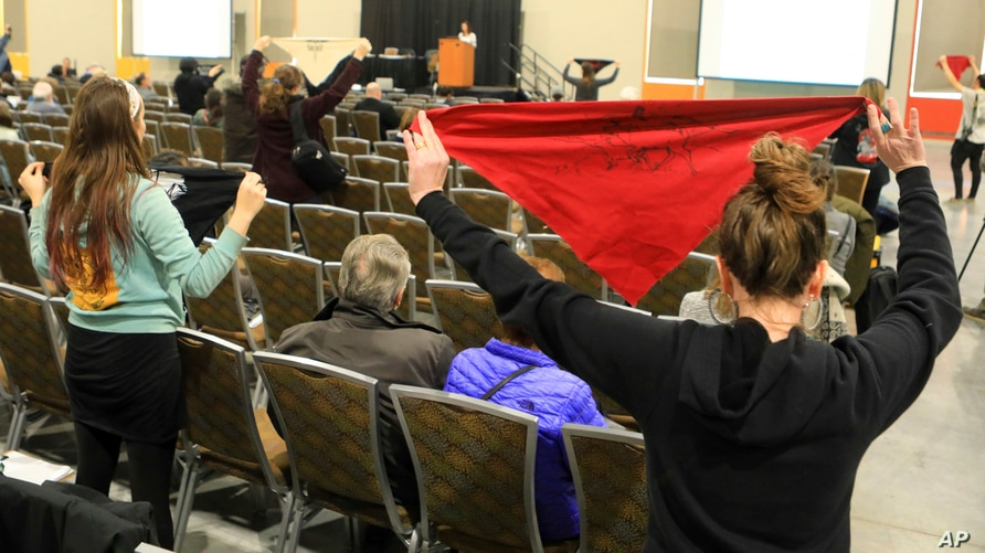 FILE - In this Feb. 11, 2019 file photo, protesters hold up flags during a public hearing on a draft environmental plan on…