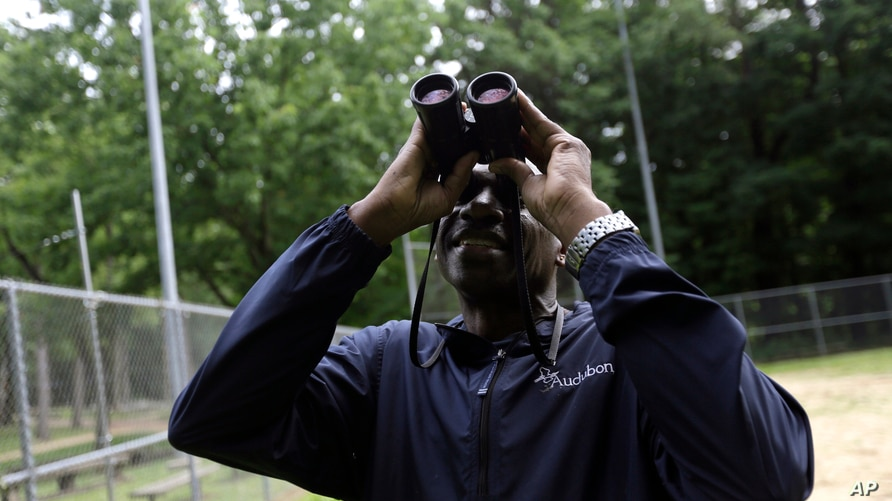 Keith Russell, program manager of urban conservation at Audubon Pennsylvania, looks through binoculars while conducting a…