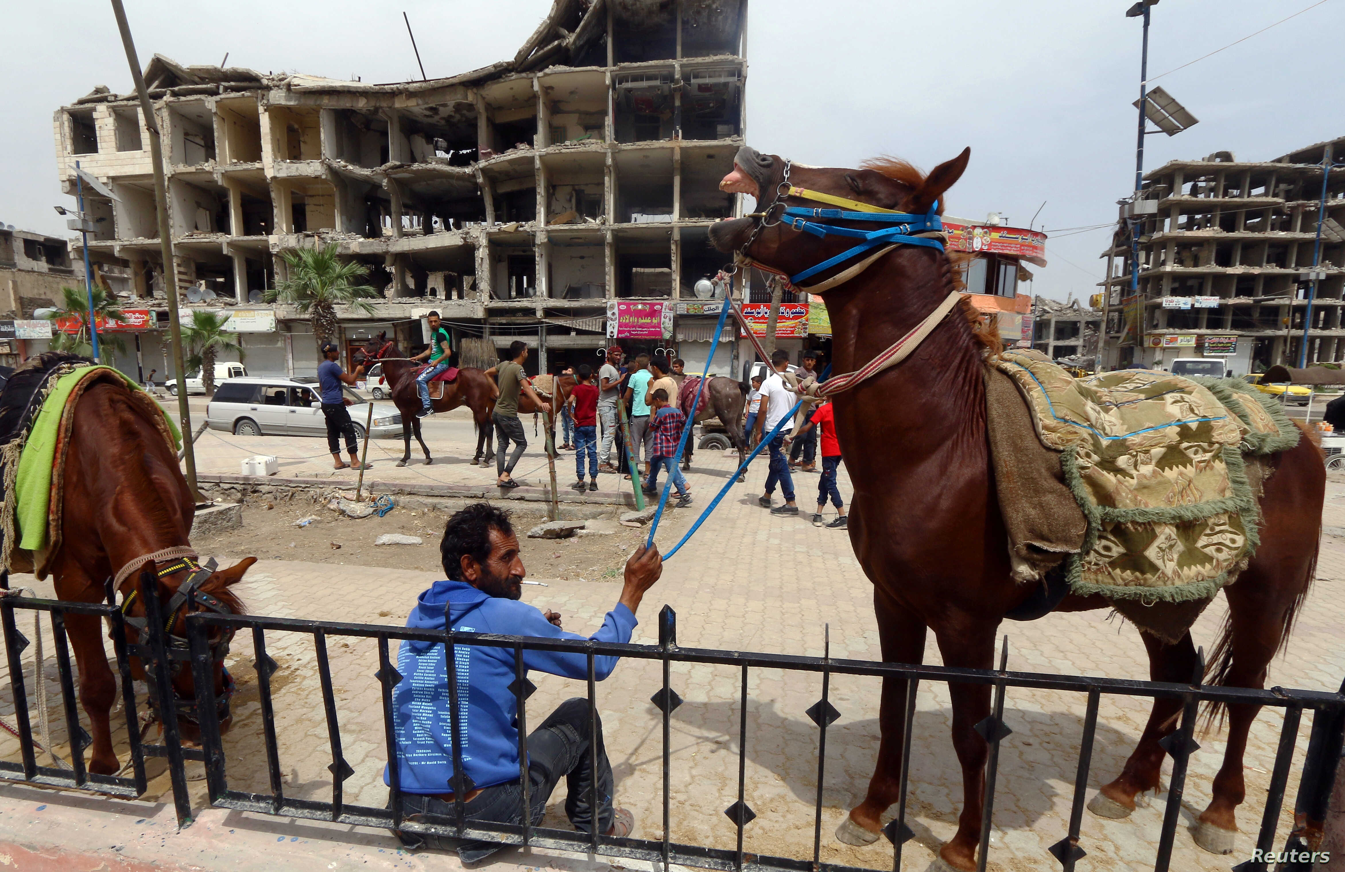 Arabian Horse Racing Is Revived In Syria S Raqqa After Islamic State Voice Of America English