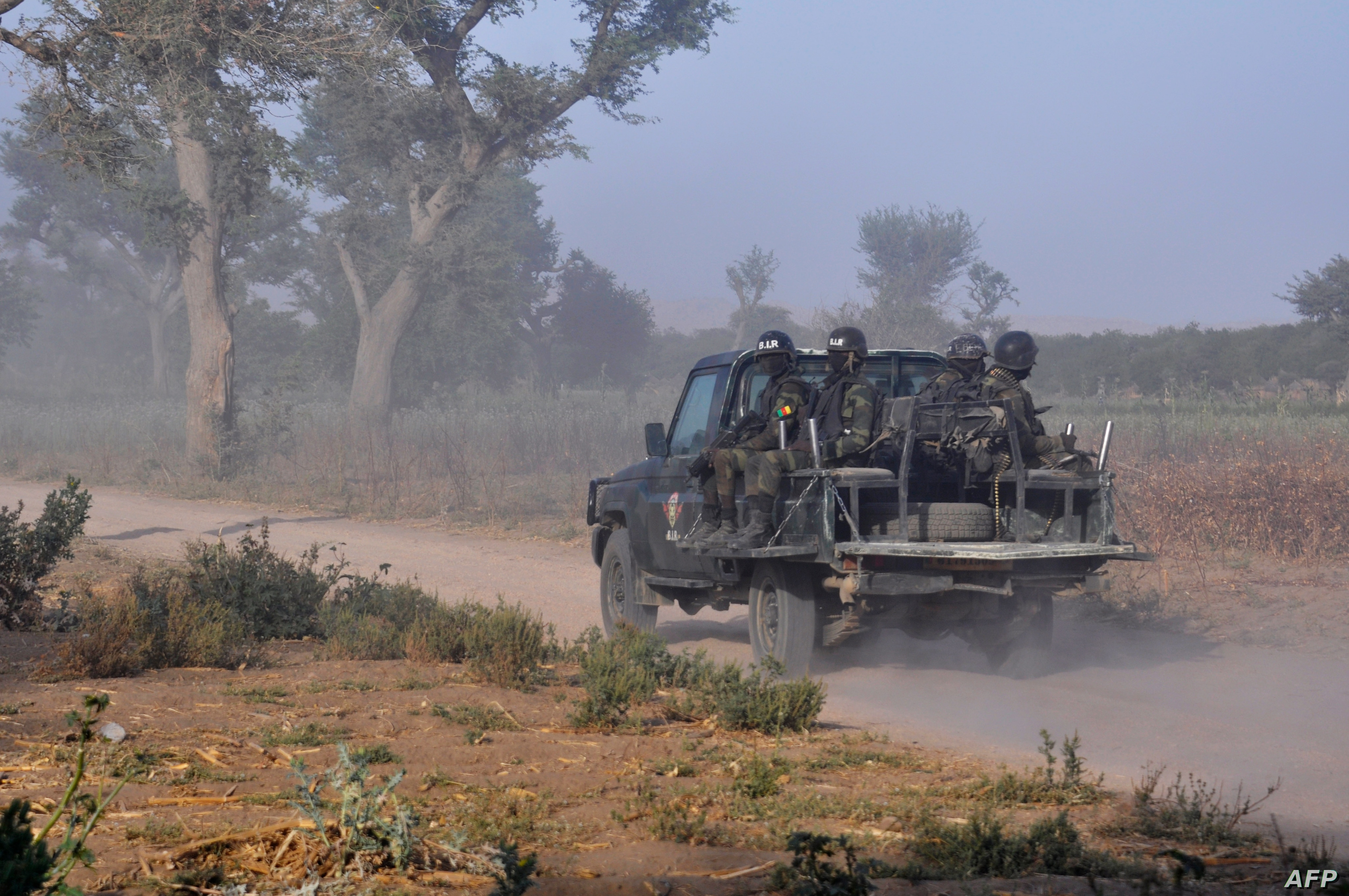 Cameroon Military Arrests 100s in ...