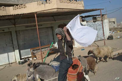 A man raises a white flag as he flees from a zone of conflict between the Iraqi military and Islamic State militants in Gogjali, on the eastern outskirts of Mosul, Iraq, Nov. 5, 2016.