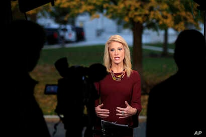 Counselor to President Donald Trump Kellyanne Conway is interviewed on television at the White House's North Lawn in Washington, Nov. 7, 2018.