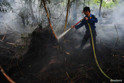 FILE - A Pontianak city firefighter sprays water on a peatland fire on the outskirts of Pontianak, West Kalimantan, Indonesia, Aug. 22, 2016.