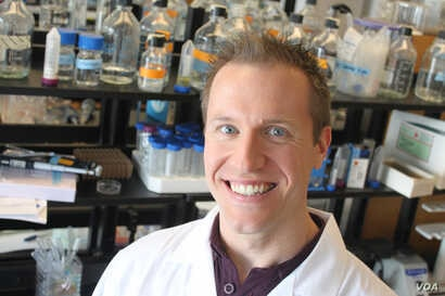 Biomedical sciences professor Jonathan Schertzer is senior author of a paper on postbiotics published in the journal Cell Metabolism.