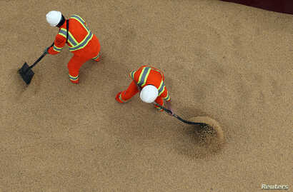 FILE - Employees working at cargo ship Kypros Land which is loading soybeans to China at Tiplam terminal in Santos, Brazil, March 13, 2017.