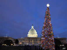 The soaring U.S. Capitol Christmas Tree has drawn criticism — not for its beauty, but for what some feel is its religious symbolism