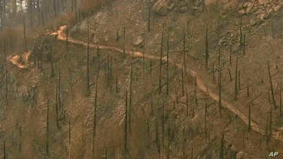FILE - This image taken from video provided by KGW-TV shows fire damage to the area surrounding the Angel's Rest trail in the Columbia River Gorge near Cascade Locks, Oregon, Sept. 7, 2017.