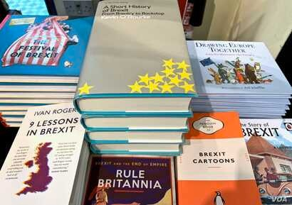 Reading material on Brexit for adults and kids alike can be found in many of London's bookstores.
