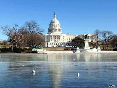Seagulls sitting on ice in the freezing pool outside Capitol Hill as temprature drops to minus 10. (Diaa Bekheet/VOA)