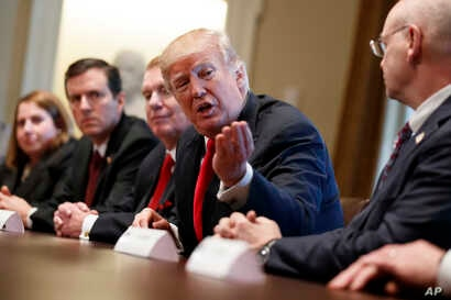 President Donald Trump speaks during a meeting with steel and aluminum executives in the Cabinet Room of the White House, March 1, 2018, in Washington. From left, Beth Ludwig of AK Steel, Roger Newport of AK Steel, John Ferriola of Nucor, Trump, and
