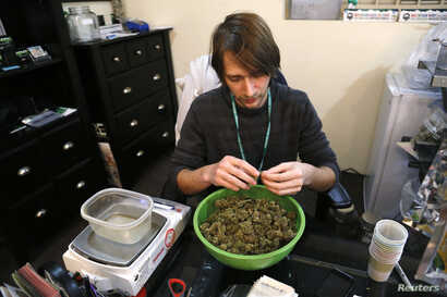 Skylar Hall prepares marijuana buds for sale at the Botana Care store ahead of their grand opening on New Year's day in Northglenn, Colorado, Dec. 31, 2013.