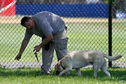 A law enforcement K-9 unit searches for evidence in Alexandria, Va., June 15, 2017, the day after House Majority Whip Steve Scalise of Louisiana was shot during during a congressional baseball practice.