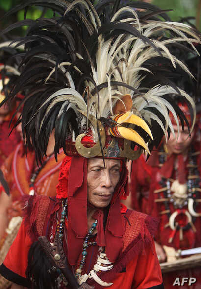A tribesman from Indonesia's Sulawesi island, clad in traditional hornbill headgear, participates in a gathering for indigenous communities in Tanjung Gusta, North Sumatra, March 17, 2017. The congress of more than 5,000 indigenous leaders in the vil...