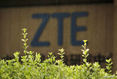 FILE - The logo of China's ZTE Corp is seen at the lobby of ZTE Beijing research and development center building in Beijing, China, June 13, 2018.
