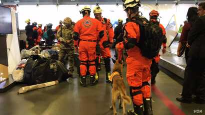 A group of 32 rescuers from Panama arrived with two canine rescuers to help find people trapped in collapsed buildings and dig them out. They arrived at the Benito Juárez International Airport in Mexico City, Sept. 20, 2017.