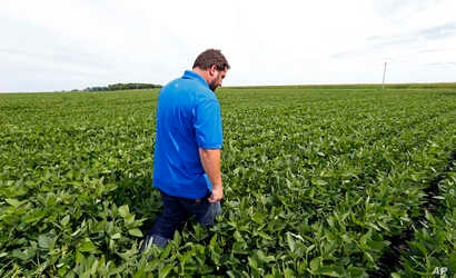 FILE - farmer Michael Petefish walks through his soybeans at his farm near Claremont in southern Minnesota.