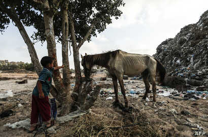 A Palestinian child looks at a horse in an impoverished neighbourhood of the Khan Younis refugee camp in southern Gaza Strip on August 25, 2018.