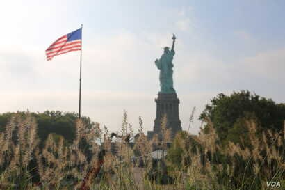 The Statute of Liberty seen from atop the new museum through meadow grasses.