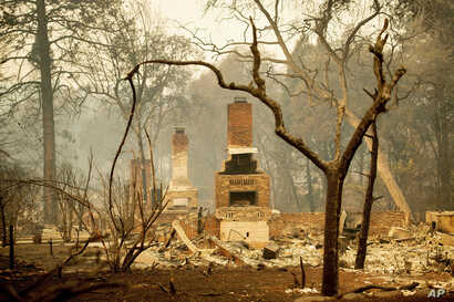 Fireplaces stand amid destroyed residences following the Camp Fire in Paradise, Calif., Nov. 12, 2018.