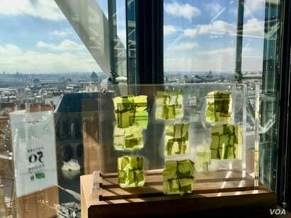 "Algae, which are nutrient-rich and can have a meat-like flavor, is seen at a ""Future 50 Foods"" tasting at the Pompidou Center in Paris."