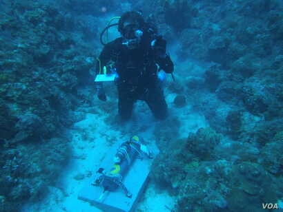 Max Kaplan setting up an autonomous device to record the reef sound, a proxy measurement of coral reef biodiversity in U.S. Virgin Islands National Park, (Credit: T. Aran Mooney, Woods Hole Oceanographic Institution)