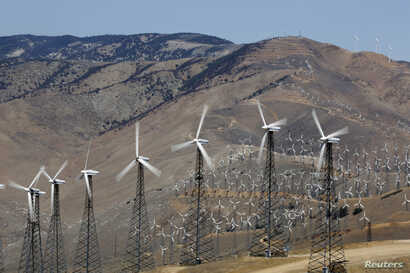 A section of the Tehachapi Pass Wind Farm is pictured in Tehachapi, California June 19, 2013.