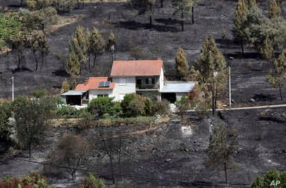 A house that escaped a recent forest fire stands out against the burnt ground in Serra do Macario, central Portugal, June 20 2017.
