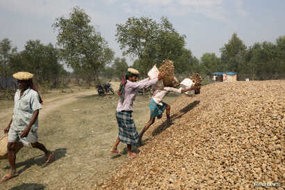 FILE - Construction workers stack stones on the island of Bhasan Char in the Bay of Bengal, Bangladesh, Feb. 14, 2018.