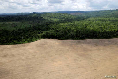 An aerial view of cleared land is seen during an operation to combat illegal mining and logging conducted by agents of the Brazilian Institute for the Environment and Renewable Natural Resources, supported by military police, in the municipality of N...