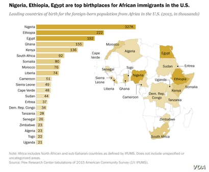 Countries of birth for African immigrants to the United States